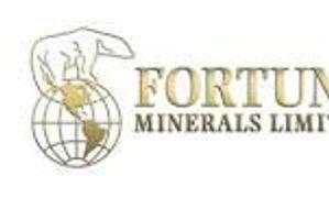 Fortune Minerals Ltd. (FT-T) — Stockchase