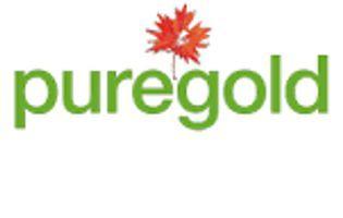 Pure Gold Mining Inc. (PGM-X)